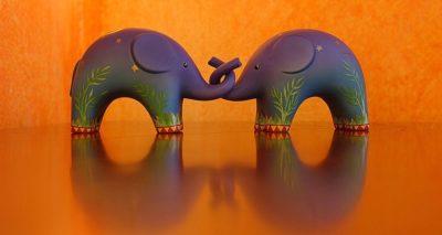 Gesten der Liebe - Elefantenliebe