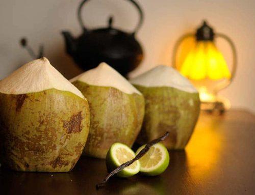 Slow Food Rezept: Kokosnuss-Joghurt