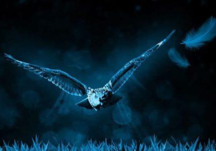 Vorschaubild 7. Rauhnacht