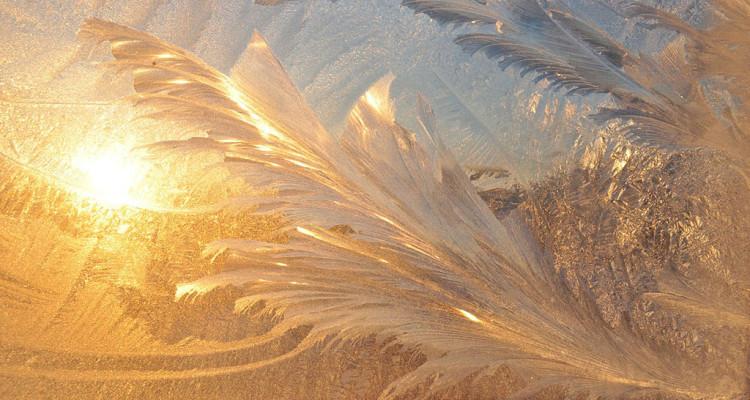 Eisblumen im Licht