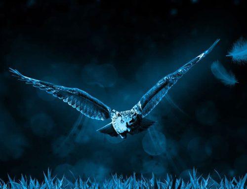 Siebente Rauhnacht: Der Ruf der Seele