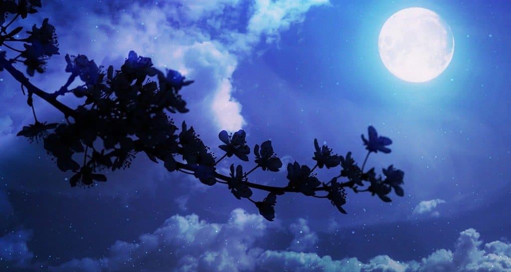 Mond im Skorpion