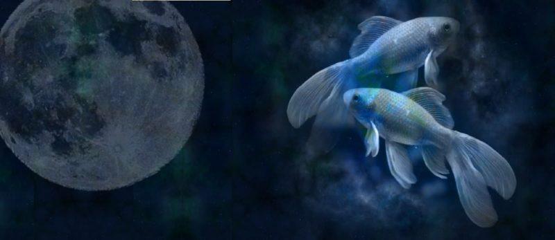 Vollmond in Fische