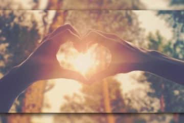 Liebe Herz Leben