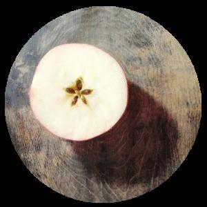 Apfel Pentagramm Querschnitt
