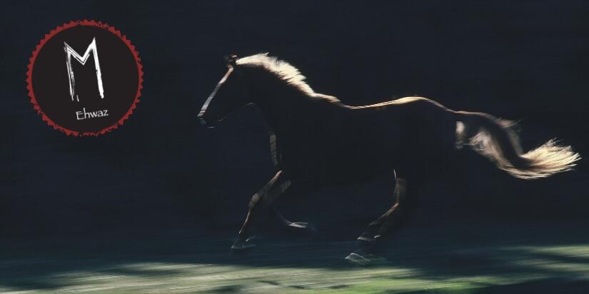 Ehwaz Rune Pferd