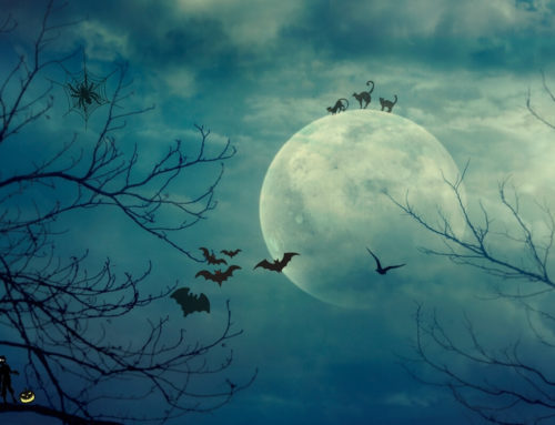Blue Moon zu Samhain – 31. Oktober 2020