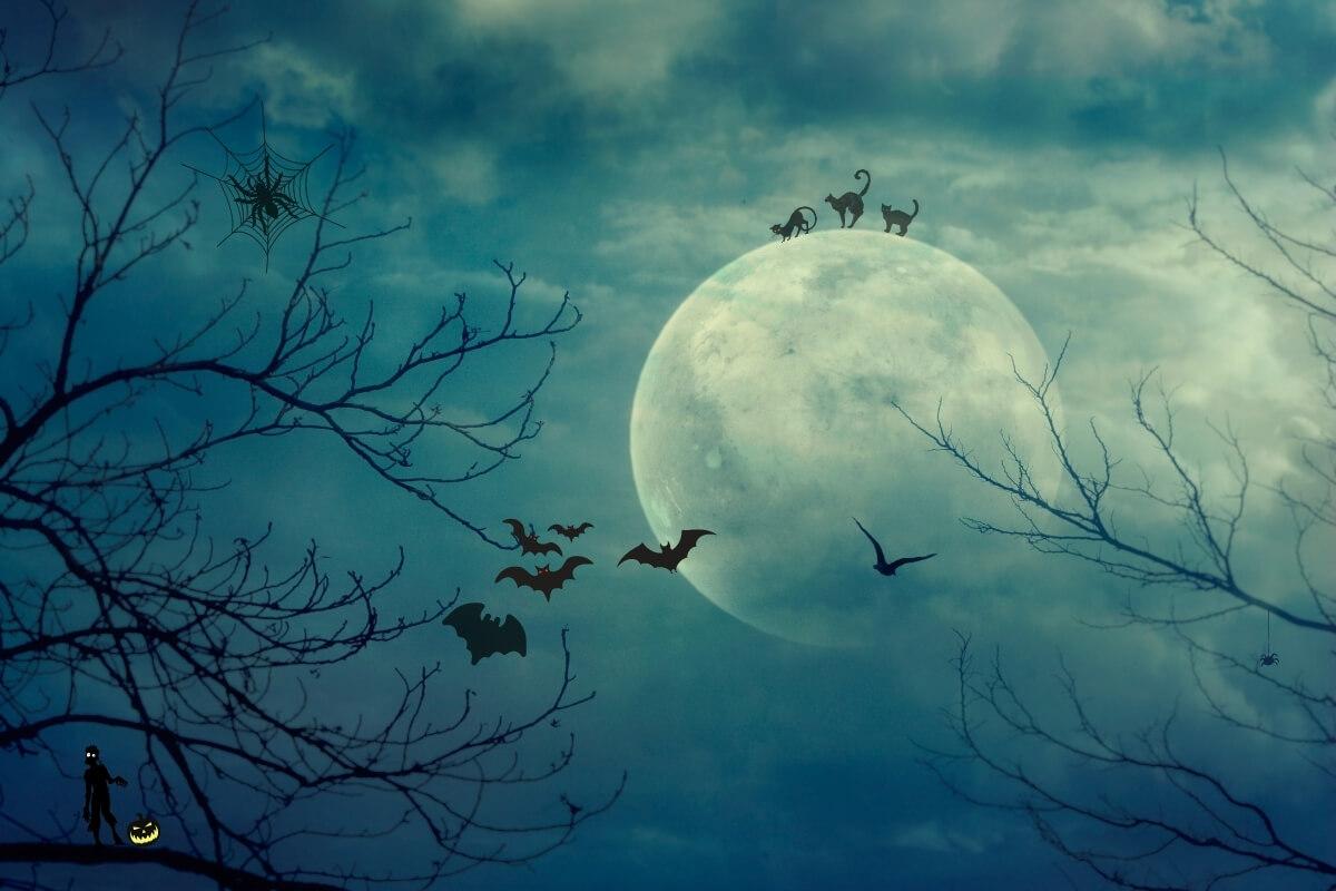 Blue Moon zu Samhain
