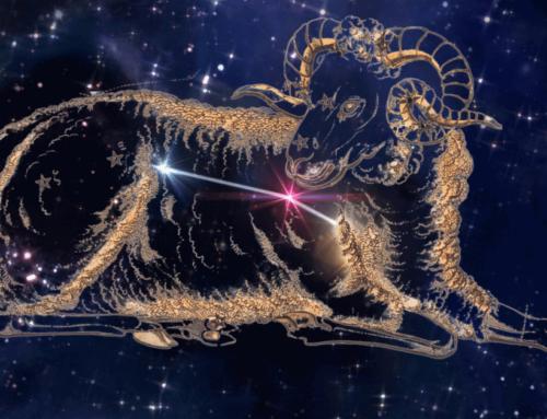 12.04.2021: Widder Neumond – Langsam in die Kraft kommen