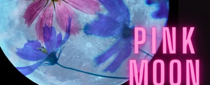 Vollmond 27.04.2021 Pink Moon